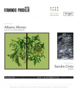 Albano Afonso. Vivir en un mundo abstracto