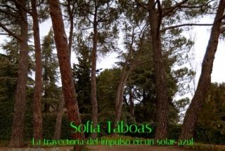 Sofía Taboas, La trayectoria del impulso en un solar azul