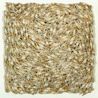 Lúcia David, Crangon crawgon, papel, fio, cola madeira 28x28x14 cm, 2020 — Cortesía de Trema Arte Contemporânea
