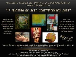 1 Muestra de Arte Contemporáneo 2015