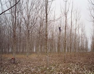 Gerardo Custance. Turcia. De la serie Órbigo, 2007. Colección MUSAC — Cortesía del MUSAC