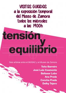 Tensión y equilibrio. Seis artistas entre el MUSAC y el Museo de Zamora - Visita guiada