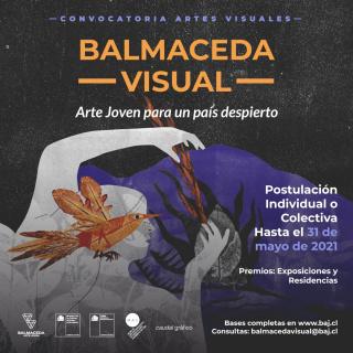 Concurso Balmaceda Visual Arte Joven para un País Despierto