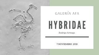 Hybridae