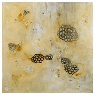 Ambigüedades. 162 x 162 cm. óleo sobre tela
