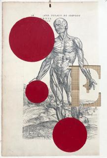 Nino Cais, Eretos, 2020, página de livro, bastão oleoso e recorte. Edição: única. 36 x 26 cm (cada) — Cortesía del artista y de Casa Triângulo
