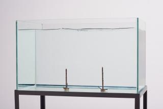 Nicolás Robbio, Observação de outra dimensão, 2019. Metal, vidro e água, 31 x 52 x 147 cm. — Cortesía de la Galeria Bruno Múrias