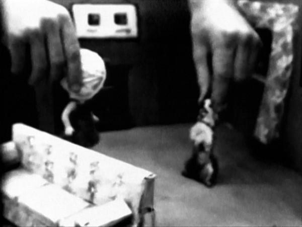 Tony Oursler, The Life of Phillis, 1979. Vídeo monocanal, b/n, so, 55 min 23 s. Col·lecció MACBA. Consorci MACBA © Tony Oursler, 2015 - Fotografia: MACBA
