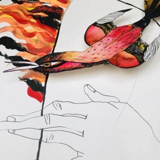 """Detalle ilustración el derecho de """"Libertad de expresión, de reunión y de asociación"""" por Katarzyna Rogowicz"""