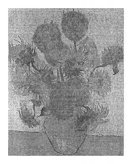 Manuel A. Fernández & Nicolás Martella. 137 (Girasoles), 2021. Escaneo e impresión inkjet. 100 x 80 cm. — Cortesía de Meridiano (Cámara Argentina de Galerías de Arte)