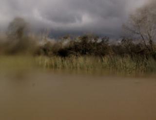 Silvana Muscio,   imagen serie S/T (Paisajes Delta). Fotografìa digital 30x40 cm, 2013