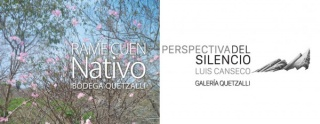 Perspectiva del Silencio