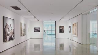 imagen de cabecera del curso de Gestión de galerías de arte