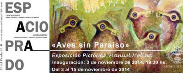 Aves sin Paraíso