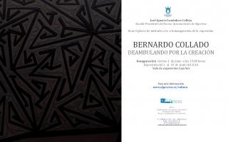 Bernardo Collado. Deambulando por la creación
