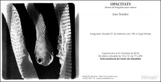 Joan Teixidor. Opacitats