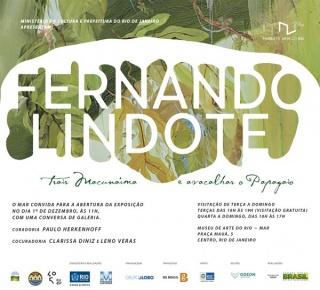 Fernando Lindote: trair Macunaíma e avacalhar o Papagaio