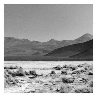 Cámara lúcida: Nueva fotografía peruana