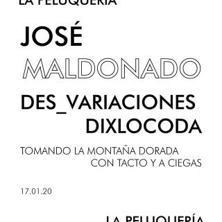 José Maldonado. Des_variaciones dixlocoda