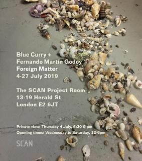 Blue Curry + Fernando Martín Godoy. Foreign Matter