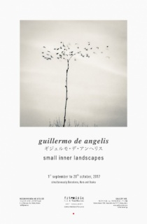 Small Inner Landscapes