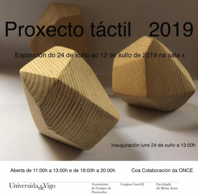 Proxecto táctil 2019