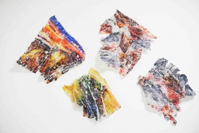 Alicia De La Torre, Serie Naturaleza, Pigment injection on Silicone,  30 x 27 cms, 2019