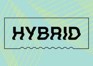 Festival Hybrid