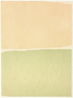 Nico Munuera, Corium II, 2018. Monotipo xilográfico sobre papel Okawara 80 grs, 70 x 51 cm. 543527 — Cortesía de la Galería La Caja Negra