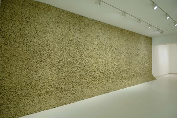 Olafur Eliasson, Moss Wall