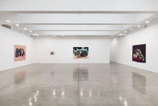 Rivane Neuenschwander. Tropics: Damned, Orgasmic and Devoted. Vista de la exposición — Cortesía de Tanya Bonakdar Gallery
