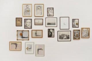 Indisciplinados. Salones en el Museo Castagnino + Macro
