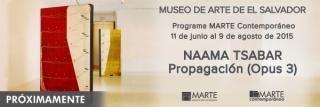 Naama Tsabar Propagation (Opus 3)