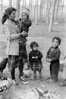 Mario Gómez Vidal, Gitanos en la chopera del Ebro, 1981 — Cortesía del INSTITUT D'ESTUDIS FOTOGRÀFICS DE CATALUNYA (IEFC)