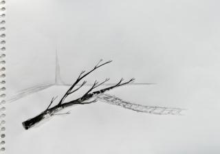 Marcelo Viquez, Riesgo necesario, 2014. Tinta sobre papel. 24 x 28 cm.