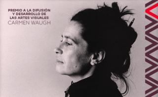 Premio a la Difusión y Desarrollo de las Artes Visuales Carmen Waugh
