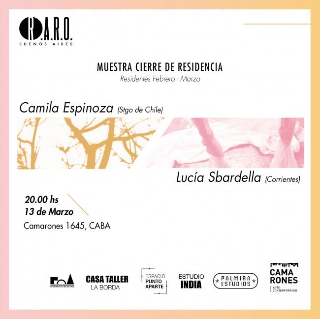 R.A.R.O. Buenos Aires - Muestra cierre de residencia