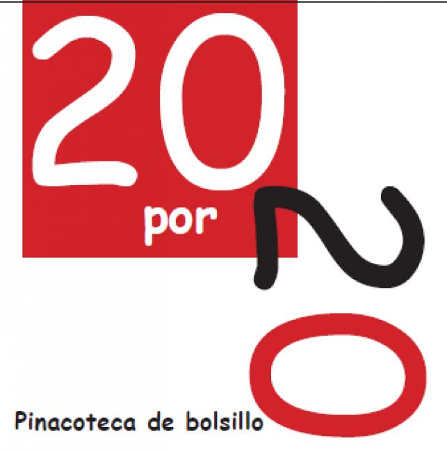 20 x20