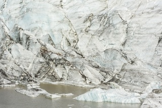Cano Erhardt, Wonders of Nature #20,  (Tip of the tongue)  2017 — Cortesía de la Galería Luis Burgos