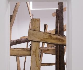 Adolfo Manzano, Evoluciones y Recovecos — Cortesía de Galeria Caicoya art projects