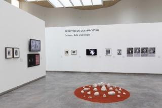 """Vista de la exposición """"Territorios que Importan: Género, Arte y Ecología"""" en el CDAN — Cortesía del CDAN"""