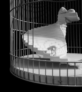 Jesús Capa. Una jaula salió en busca de un pájaro (Franz Kafka) — Cortesía del Museo Patio Herreriano