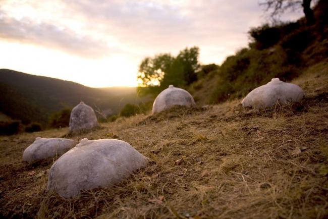 Fotografía: Lucía Loren. Madre sal, 01, 2009. Cortesía del ACVIC