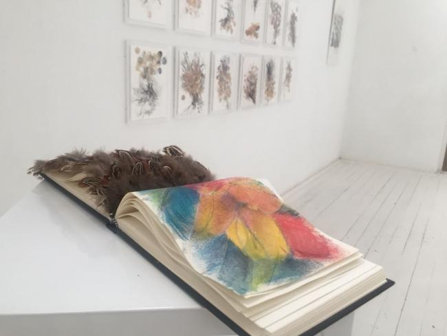 """La obra """"Libros alados"""" de Aixa Portero — Cortesía de la artista"""