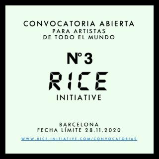 Convocatoria Abierta RICE Initiative 3