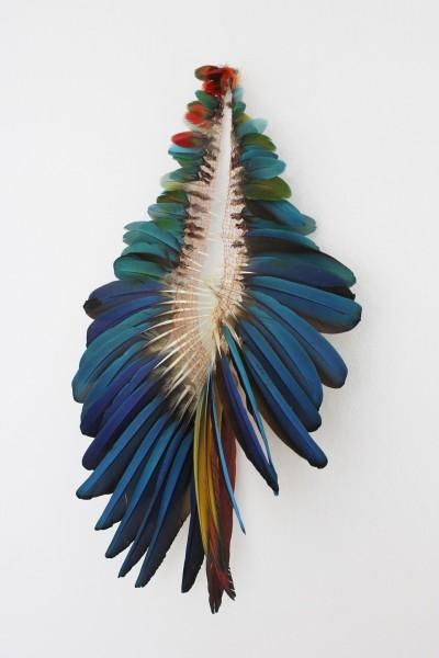 ANNA TALENS, Ara (Serie Reconstruyendo aves), Berlino, 2014. Plumas e hilo de cobre, 71x44x8 cm. Cortesía: la artista. Crédito de la fotografía: la artista