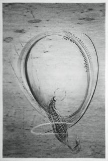 Aaren cloning rotor — Cortesía del Museo Leonora Carrington