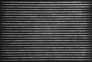 Yazid Oulab, Porte?e silencieuse #1, 2016, Oil on canvas, 130 x 195 cm.