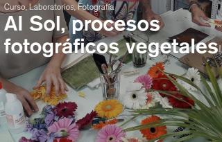 Al Sol, procesos fotográficos vegetales