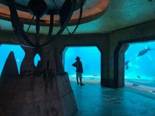 Vista del acuario de Atlantis en Paradise Island. Foto: Maria Reyes Franco. Cortesía de CPPC